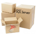 Microsoft SQL Server Developer OLP